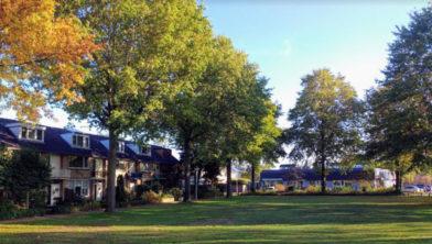 Het huidige aanzicht van het 'groene plein' aan de Steynlaan.