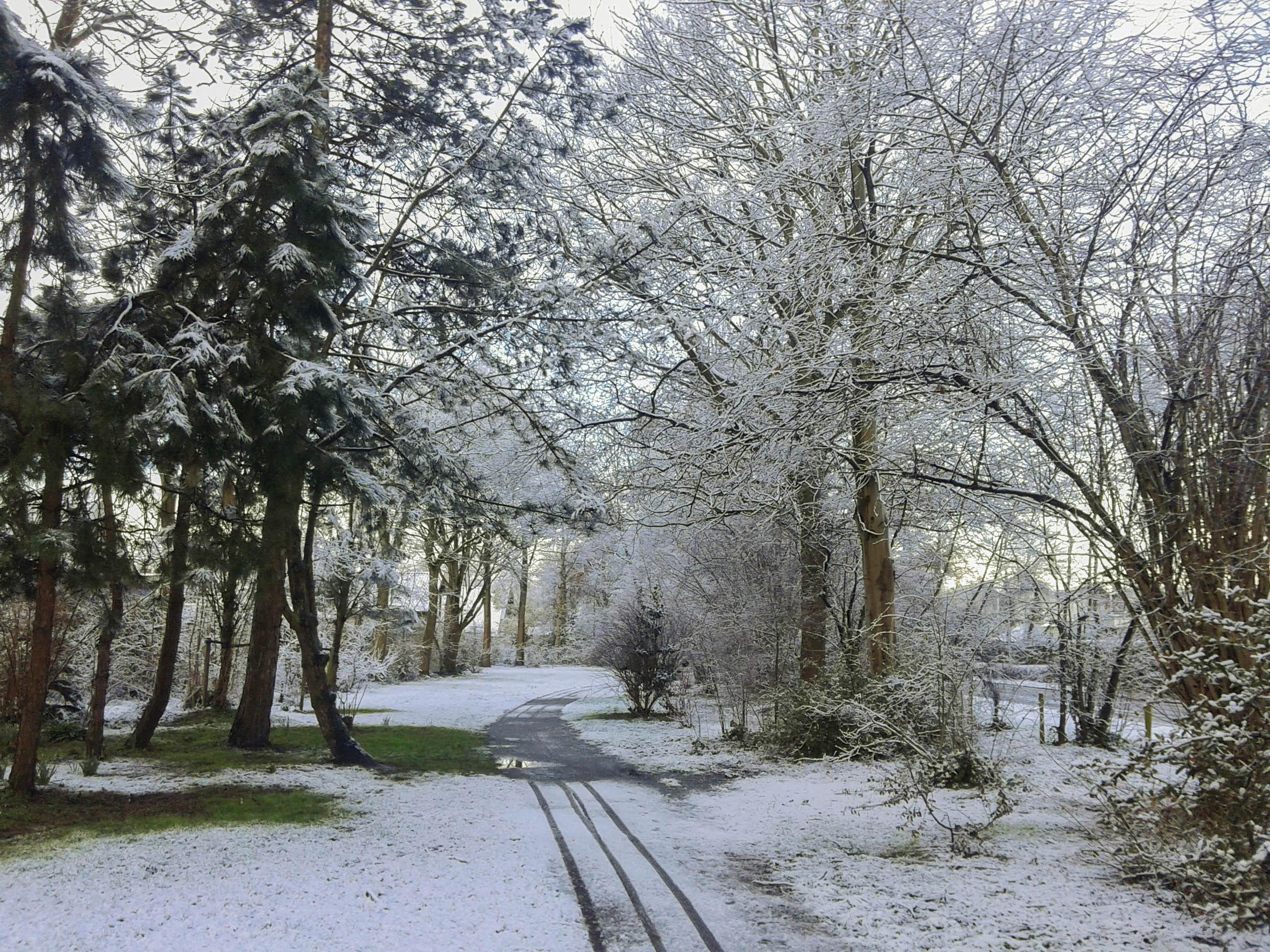 Sneeuw-9