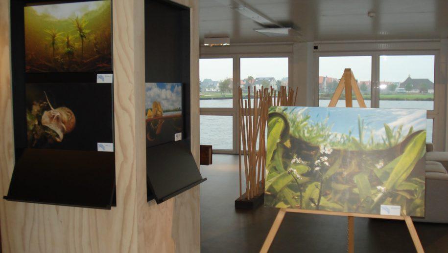 Expositieruimte in Meerstad