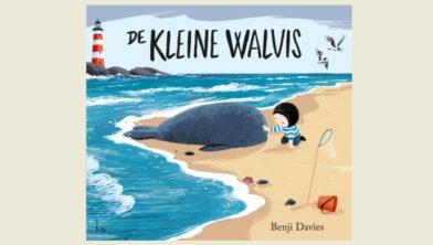 Omslag van 'De kleine walvis'.