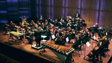 Het Nederlands Studenten Kamerorkest (Nesko).