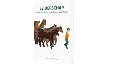 Cover van het boek Leiderschap.