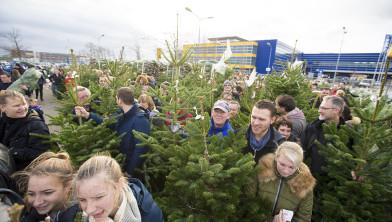 Kerstbomengekte op 6 december.