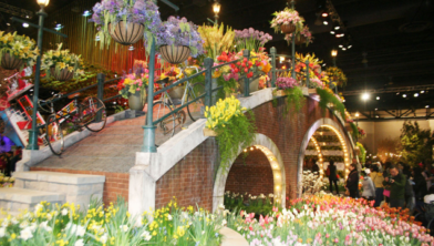 HollandFlowerWorld, onderdeel van HollandWorld