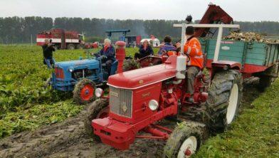 Trekkers aan het werk in de sompige polderklei