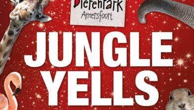 Cover Jungle Bells
