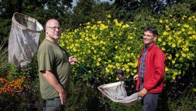 Bijenonderzoekers met schepnet bij bloemrijke vegetatie