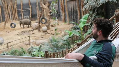 Dierverzorger Rob slaapt bij de olifanten
