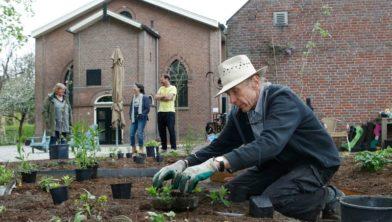 De laatste planten voor de voorbeeld Heuvelrugtuin worden in de grond gezet