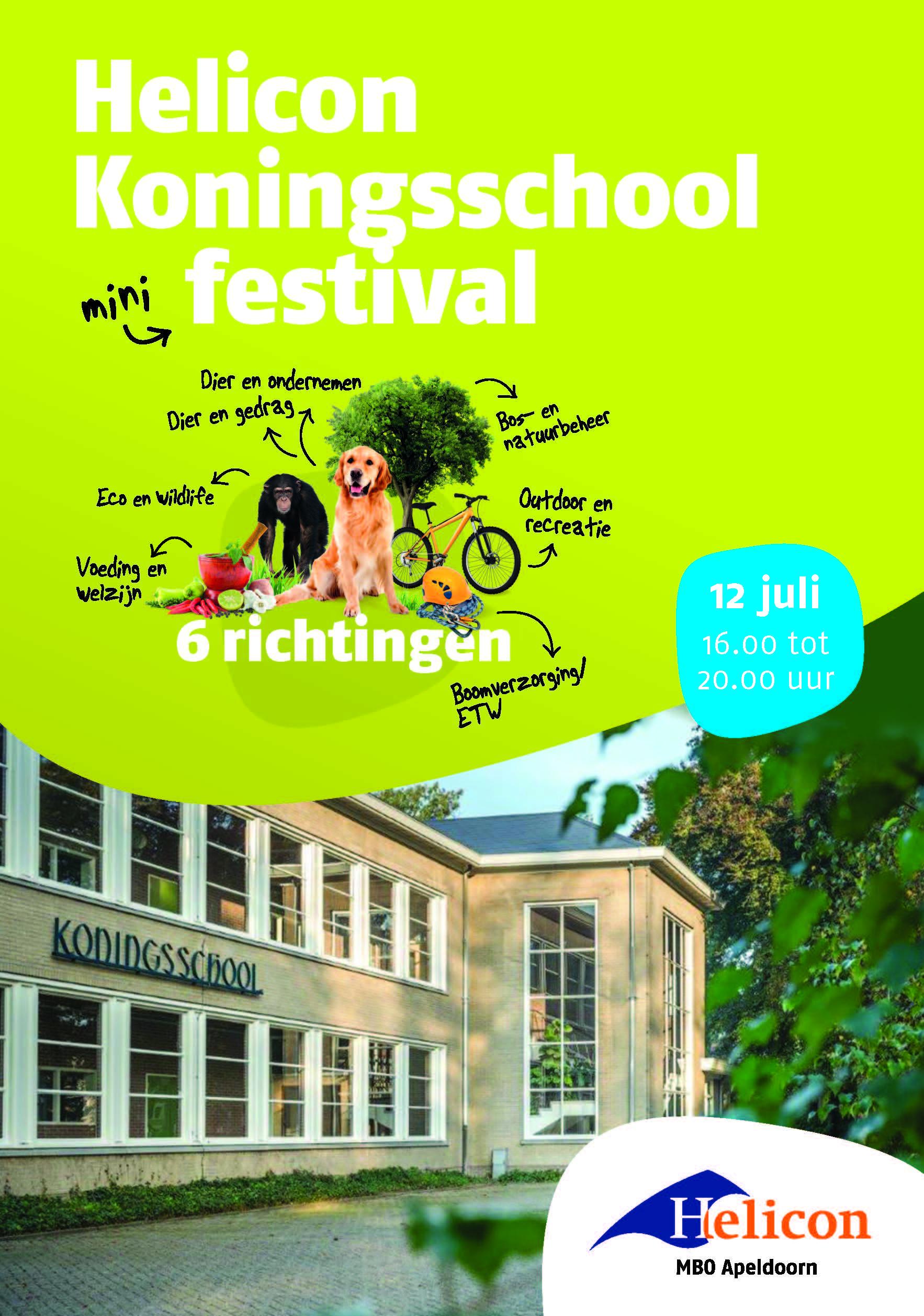 Helicon Koningsschool mini-festival op 12 juli
