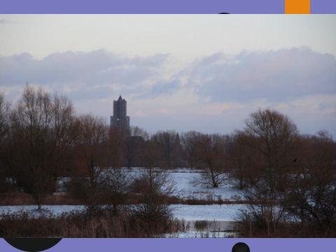 Stadsblokken-Meinerswijk