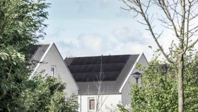 Veel zonnepanelen in Drenthe.