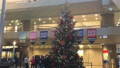 Kerstboom Kuinderbos in Tweede Kamer
