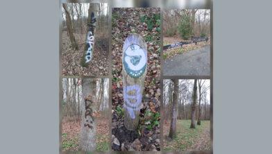 Graffiti op bomen, hekken e.d. in park De Zuidert, Emmeloord.