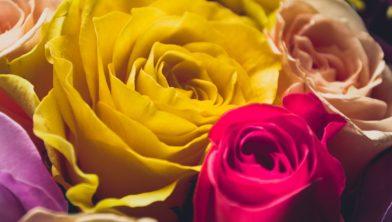 buiten bloemen verkopen mag