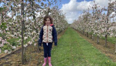 Anna Sophie in de bloeiende boomgaard
