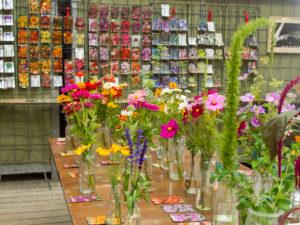 zomerbloemenfestijn