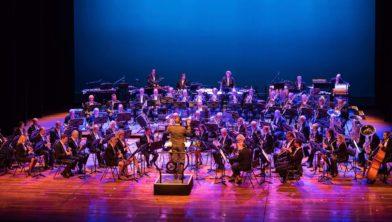 Het orkest van Douane Harmonie Nederland