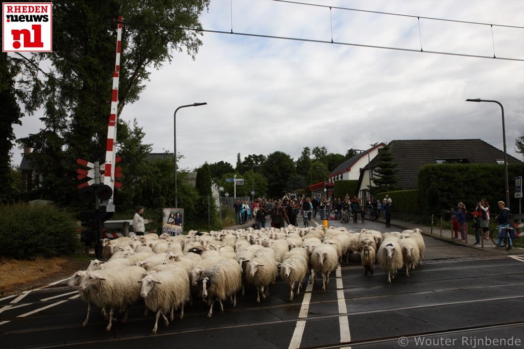 2015-06-20 Schaapscheerdersfeest 007