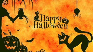 Halloween Afkomst.Lous Het Is Bijna Halloween