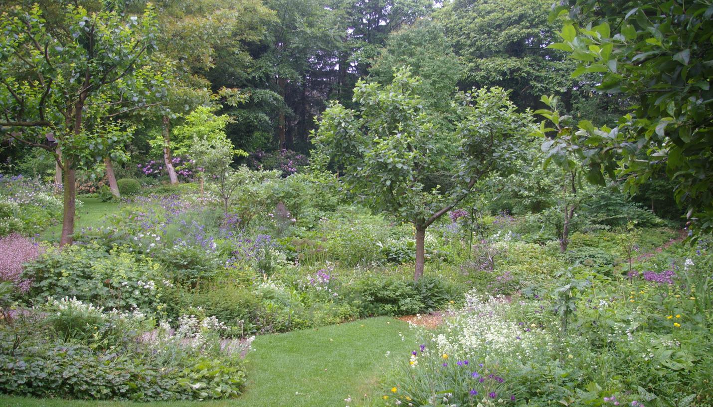 Lezing over vaste planten door laurens lageschaar bij groei bloei - Foto droge tuin ...