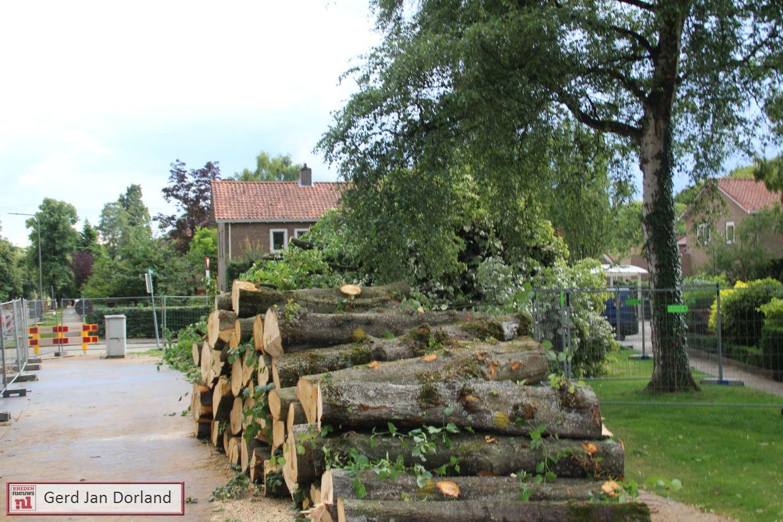 Daalhuizerweg Velp aanplant Lindebomen