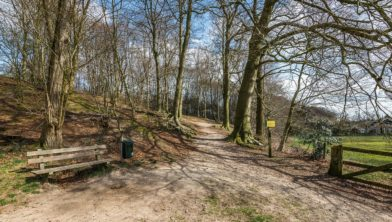 Historische dagwandeling rond Rosendael