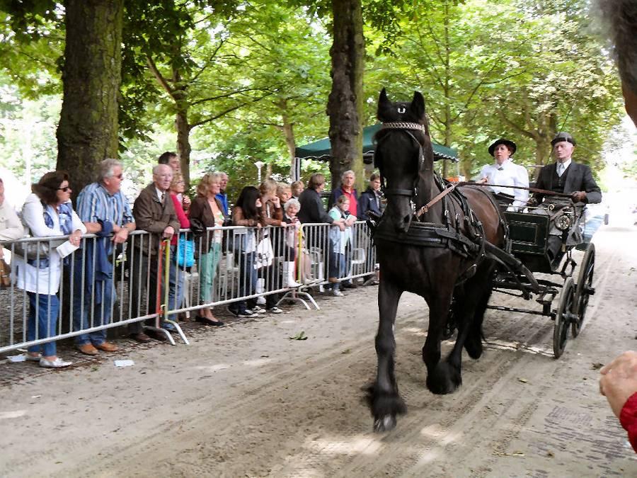 Ringsteken te paard - Stichting Velp voor Oranje