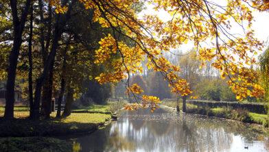 Geleenbeek wordt heringericht