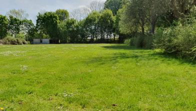 Een deel van de algemene begraafplaats wordt ingericht als natuurbegraafplaats