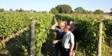 Stichting Wijngenootschap Sint Rosa