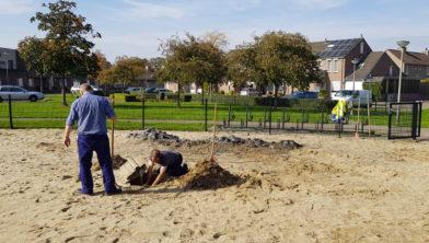 Opruimwerkzaamheden door gemeentewerkers bij 't Ruiberke