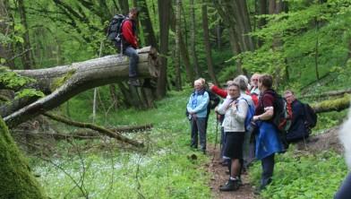 Hier op natuur- en cultuurreis in Zuid-Tsjechië