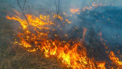 Brandstichting Landgoed Rechteren