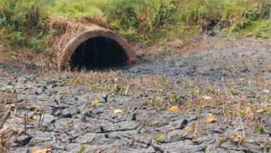 Drooggevallen stuw in het Westerhuizingerveld