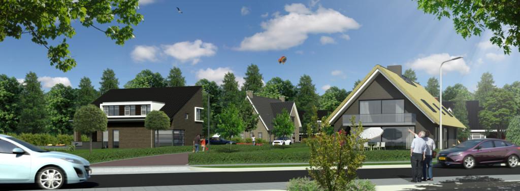 Veldwijk vanaf de Reutummerweg