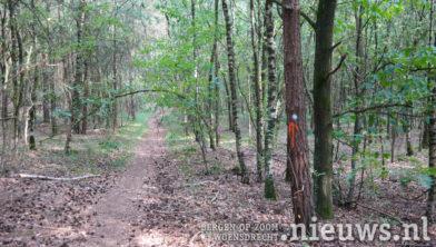De wandelpaden zijn herkenbaar aan de oranje en witte stippen op de bomen