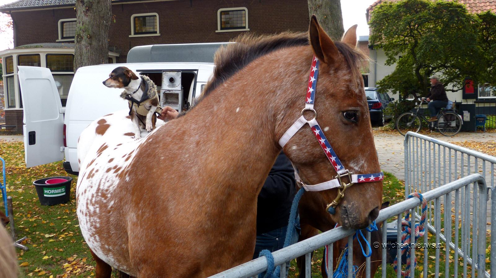 Paardenmarkt Wijchen