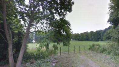 Het Oosterpark in Wijchen  was een van de mogelijke locaties voor een alternatief evenement.