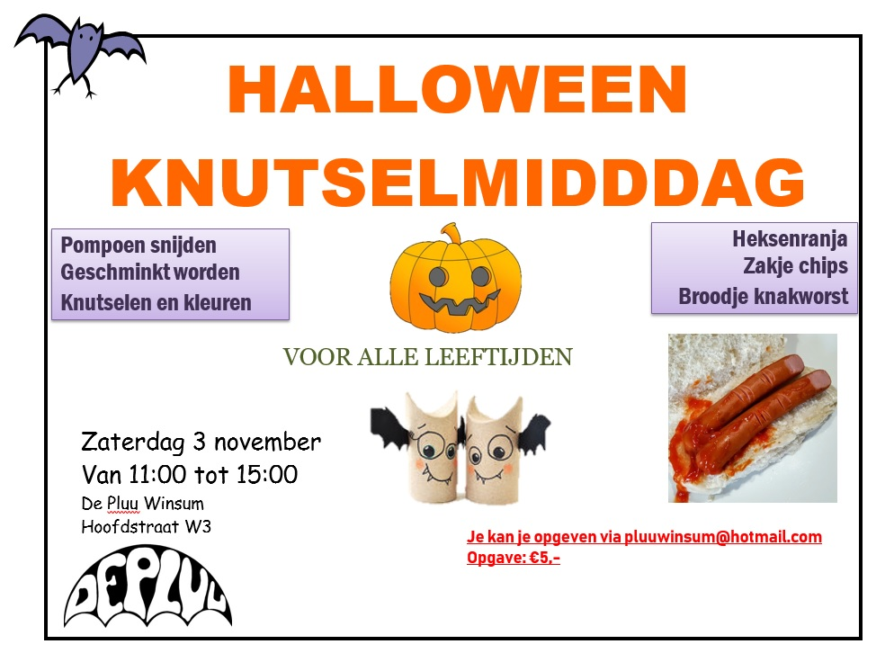 Tekenen En Zo Halloween.Halloween Knutselmiddag In De Pluu Winsum