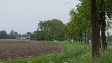 Gezicht op de Bloemenbuurt waar De Kortsluiting gepland is.
