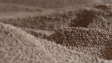 Houtpellets: het voer voor  hongerige biomassacentrales.