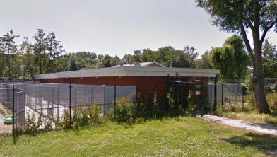 Het asiel aan de Doctor H.G. Scholtenstraat 36 in Zaandam.