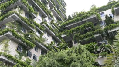 Een groen voorbeeld uit China.