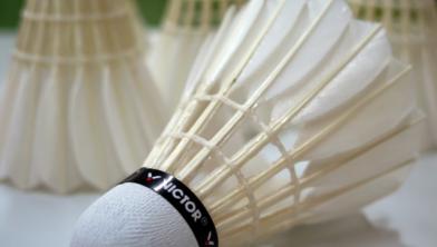 Eén van de aangeboden sporten is badminton.