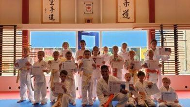 De geslaagde karateka vanaf witte band