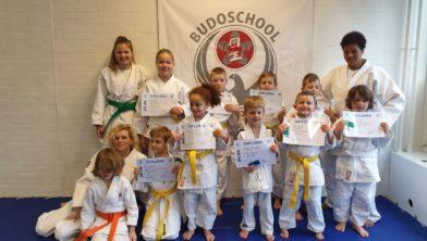 De geslaagde judoka
