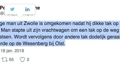 Zwollenaar komt om het leven bij Olst