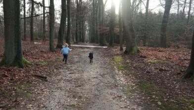 Baasje en hondje samen een rondje rennen