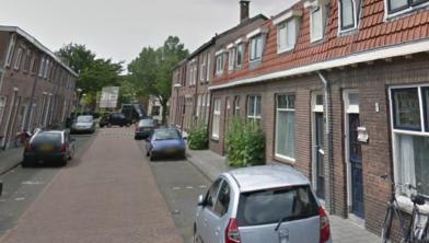 De 'saaie' Dieverhoven wordt een groene  oase in Zwolle